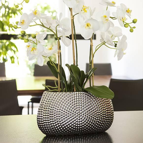 Dekozentrale Der Onlineshop Für Floristenbedarf Dekobedarf